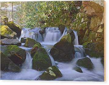 Cherry Run Cascades #1 - Bald Eagle State Forest Wood Print