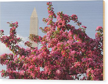 Wood Print featuring the photograph Cherry Trees And Washington Monument 5 by Mitchell R Grosky