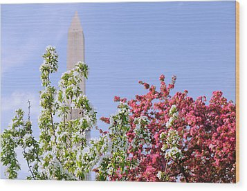 Wood Print featuring the photograph Cherry Trees And Washington Monument Four by Mitchell R Grosky