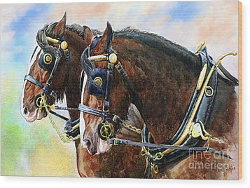 Chestnut Shire Horses Wood Print by Anthony Forster