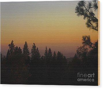 Chiaronaturo II Wood Print by Ursel Hamm and Kristen R Kennedy