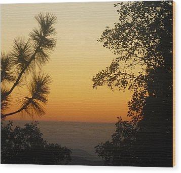 Chiaronaturo IIi Wood Print by Ursel Hamm and Kristen R Kennedy