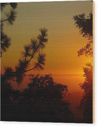 Chiaronaturo Iv Wood Print by Ursel Hamm and Kristen R Kennedy