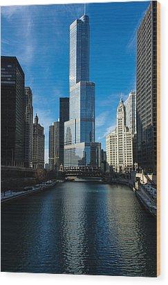 Wood Print featuring the photograph Chicago Blues by Georgia Mizuleva