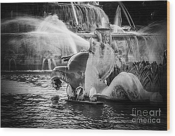 Chicago Buckingham Fountain Seahorse In Black And White Wood Print by Paul Velgos