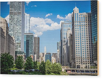Chicago Cityscape Downtown Buildings Wood Print by Paul Velgos