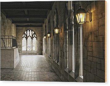 Chicago Halls  Wood Print by Eugene Bergeron