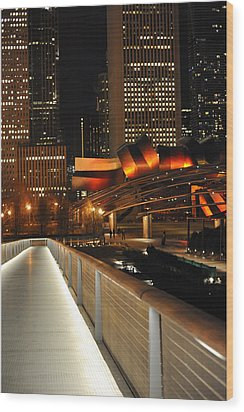 Chicago Millenium Park Wood Print by Steve Archbold