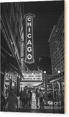 Chicago Nights Wood Print by Terry Rowe