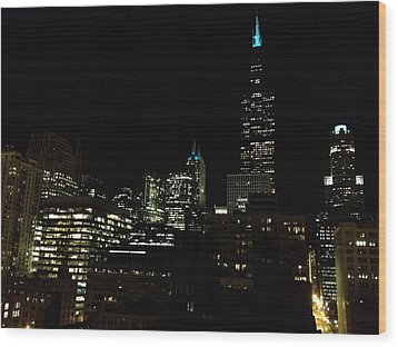 Wood Print featuring the photograph Chicago Skyline by Alan Lakin