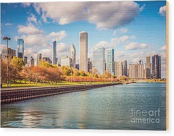 Chicago Skyline And Lake Michigan Photo Wood Print by Paul Velgos