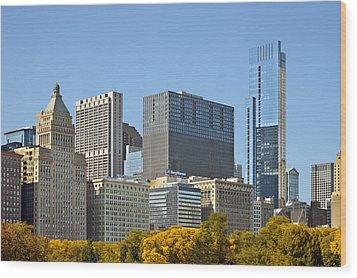 Chicago Skyline From Millenium Park II Wood Print by Christine Till