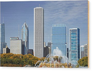 Chicago Skyline From Millenium Park Iv Wood Print by Christine Till