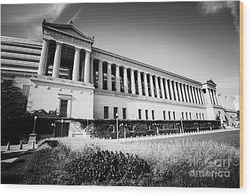 Chicago Solider Field Black And White Picture Wood Print by Paul Velgos