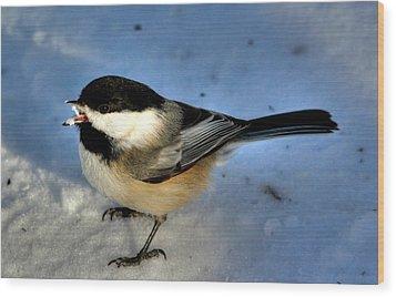 Chick-a-dee-dee-dee Wood Print by Larry Trupp