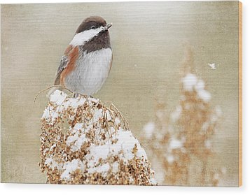 Chickadee And Falling Snow Wood Print