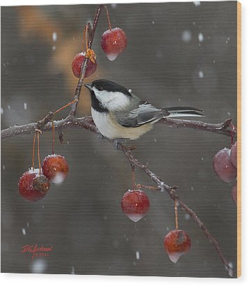 Chickadee In The Snow Wood Print