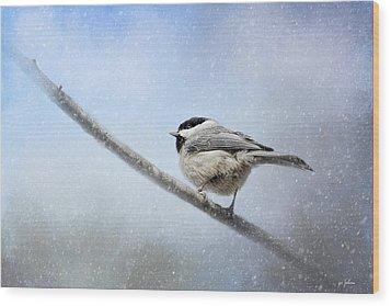 Chickadee In The Snow Wood Print by Jai Johnson