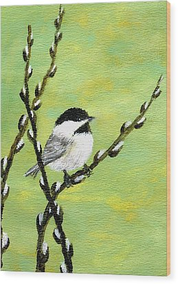 Chickadee On Pussy Willow - Bird 1 Wood Print by Kathleen McDermott