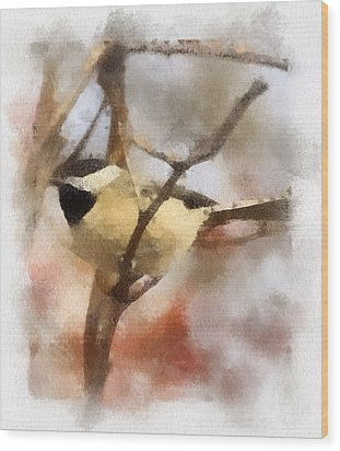 Wood Print featuring the painting Chickadee Watercolor by Kerri Farley