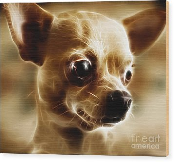 Chihuahua Dog - Electric Wood Print by Wingsdomain Art and Photography