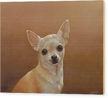 Chihuahua I Wood Print by John Silver