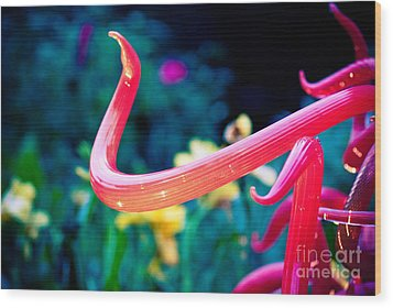 Chihuly In Fushia Wood Print by Sonja Quintero