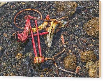 Childhood Bike Wood Print by Garry Gay