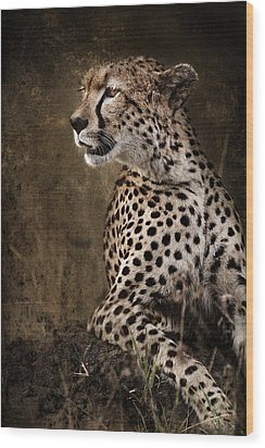 Chill Cheetah Wood Print
