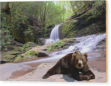 Chillin Bear Wood Print by Bob Jackson