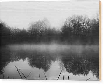 Wood Print featuring the photograph Chilly Morning Reflections by Miguel Winterpacht