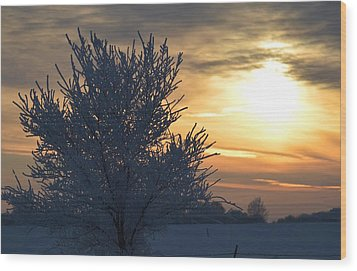 Chilly Sunrise Wood Print