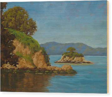 China Camp And Rat Island Wood Print by Steven Guy Bilodeau