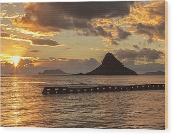 Chinaman's Hat 5 Wood Print