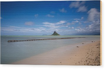 Chinaman's Hat Mokolii In Hawaii Wood Print
