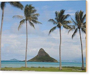 Chinaman's Hat - Oahu Hawai'i Wood Print