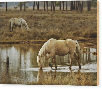Chincoteague Gold Wood Print