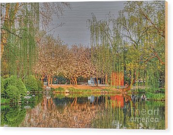 Chineese Garden Wood Print
