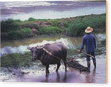 Chinese Farmer 1981 Wood Print