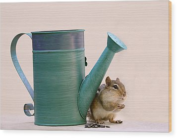 Chipmunk And Watering Can Wood Print by Peggy Collins