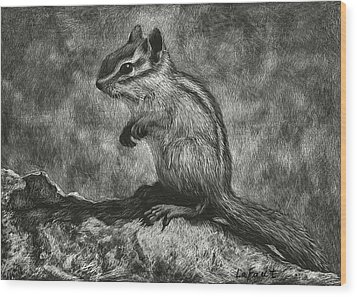 Wood Print featuring the drawing Chipmunk On The Rocks by Sandra LaFaut