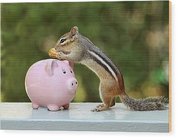 Chipmunk Saving Peanut For A Rainy Day Wood Print