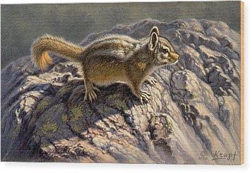 Chippy On The Rocks Wood Print by Paul Krapf