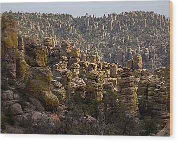 Chiricahua National Park - The Grotto 02 Wood Print by George Bostian