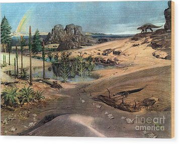 Chirotherium In Lower Triassic Landscape Wood Print by Science Source