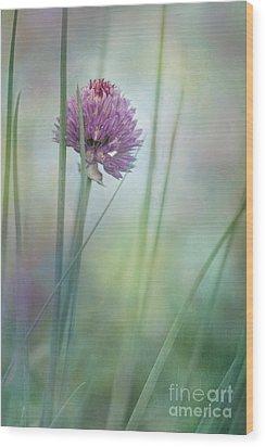 Chive Garden Wood Print by Priska Wettstein