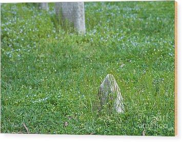 Christ Church Graveyard Wood Print by Kay Pickens