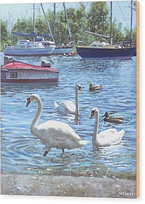 Christchurch Harbour Swans And Boats Wood Print by Martin Davey
