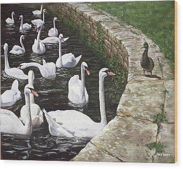 christchurch harbour swans with Mallard Duck conversation Wood Print by Martin Davey
