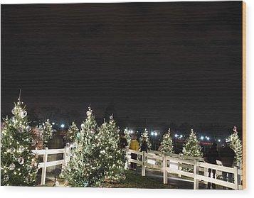 Christmas At The Ellipse - Washington Dc - 01136 Wood Print by DC Photographer